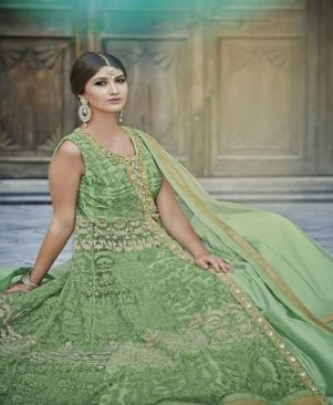 green embroidered net Ethnic Gown